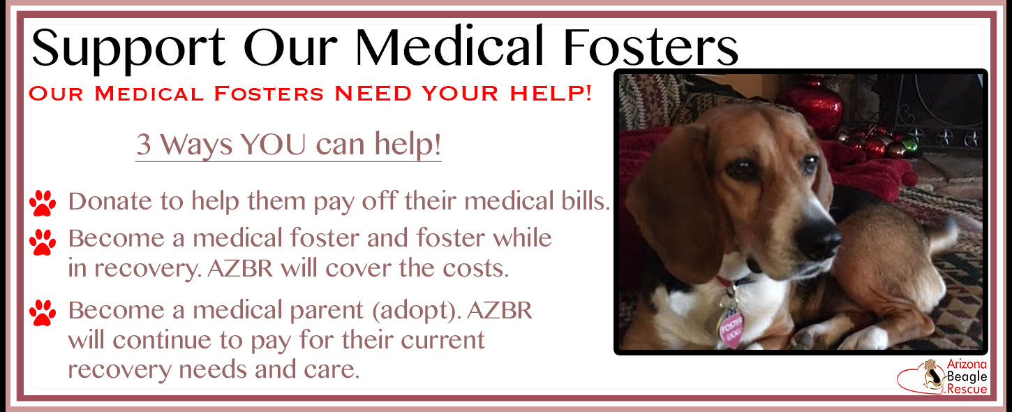 2017 Support Our Medical Fosters.png