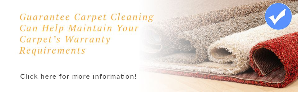 We help with Carpet Warranty specifications