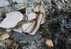 burnt paper.png
