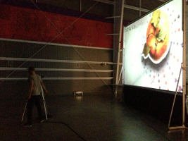Rear Projection video system from TSV Sound & Vision