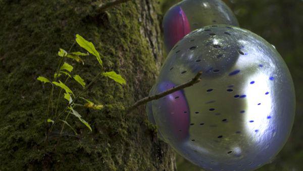 synthetic organisms art
