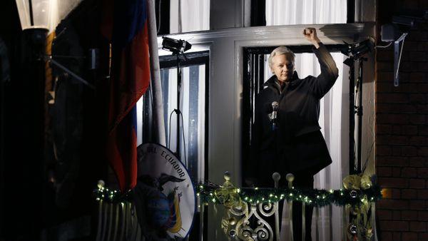 Assange of wikileaks