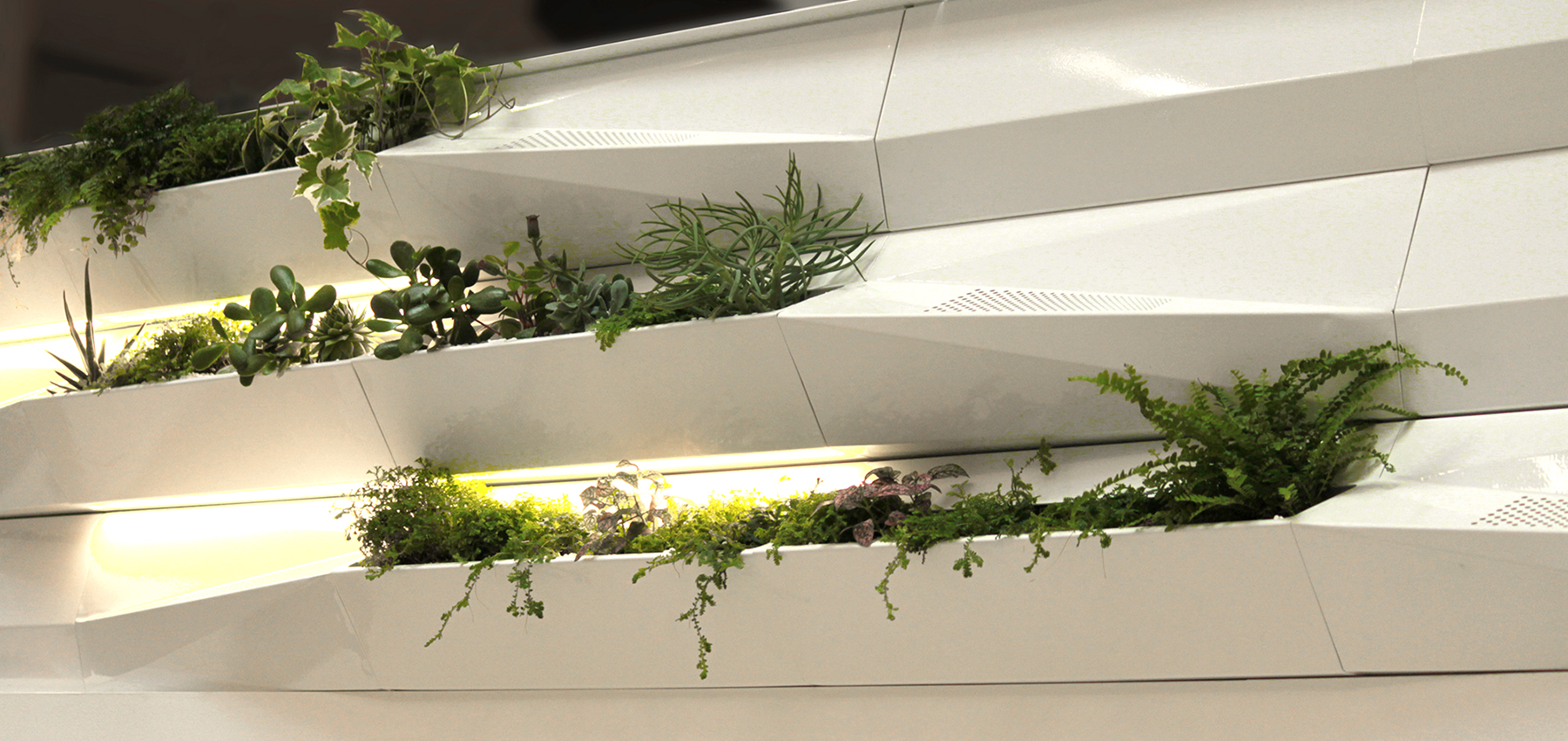 Botanica breathing wall