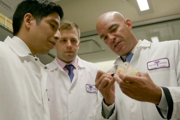NYU Department of Biomaterials