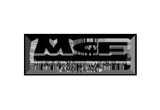 grey mitsubishi logo.png