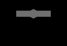 grey hanson robotics logo.png