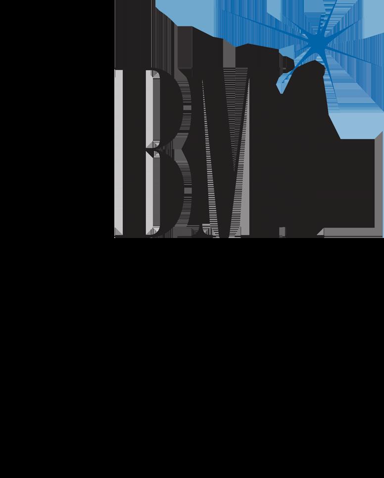 bmi logo.png