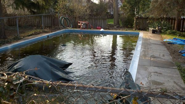 liner replacement new coping new concrete deck_before.jpg