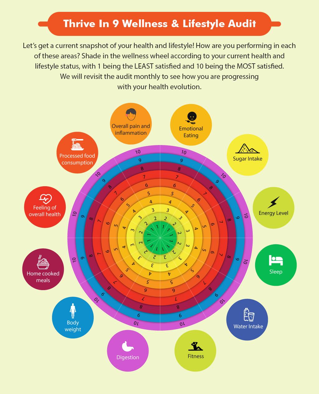 Thrive 9 Wellness Audit.jpg
