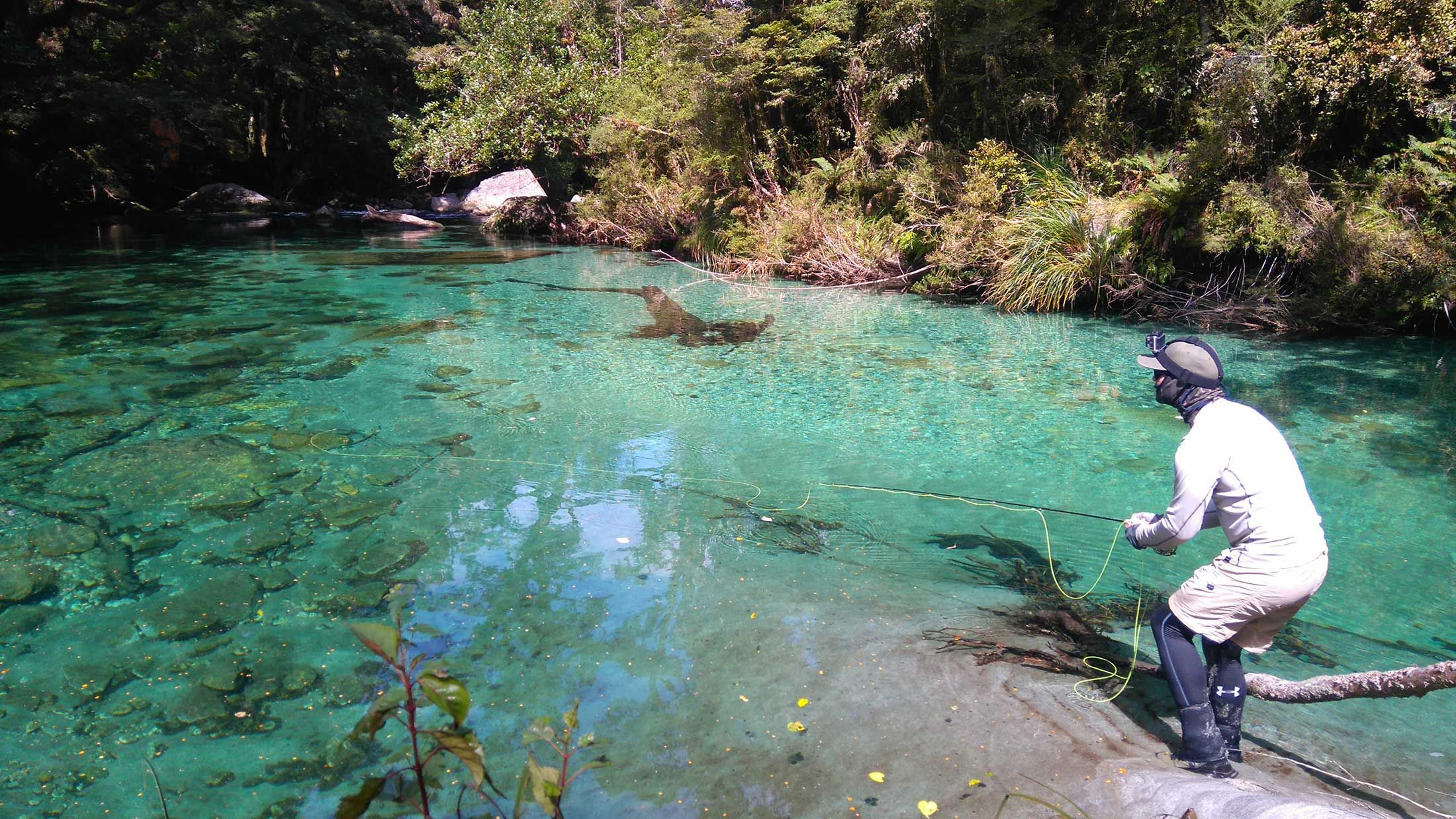 Hidden fly fishing spots in Glenorchy and Fiordland