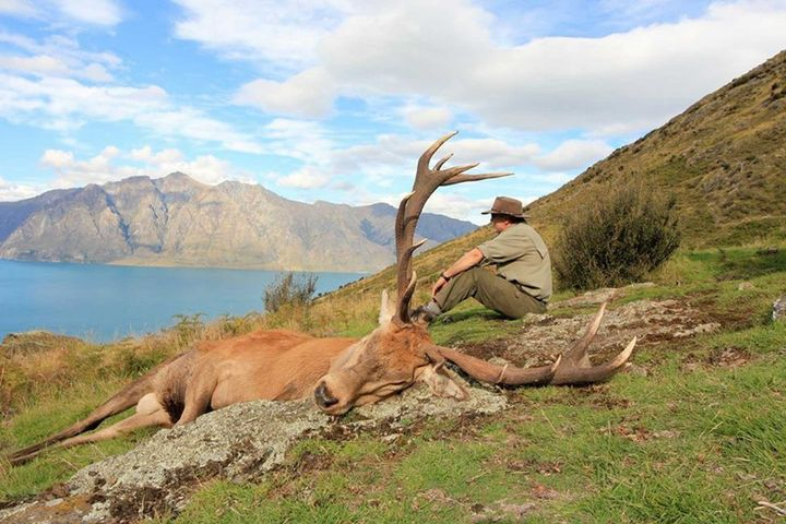 Guided Hunting Trips in NZ