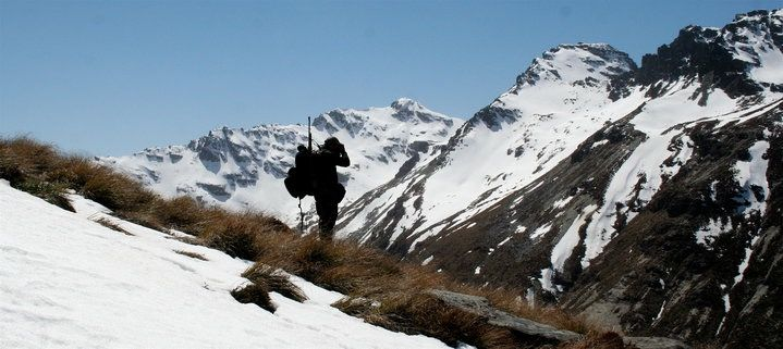 Guided hunting in the Southern Alps