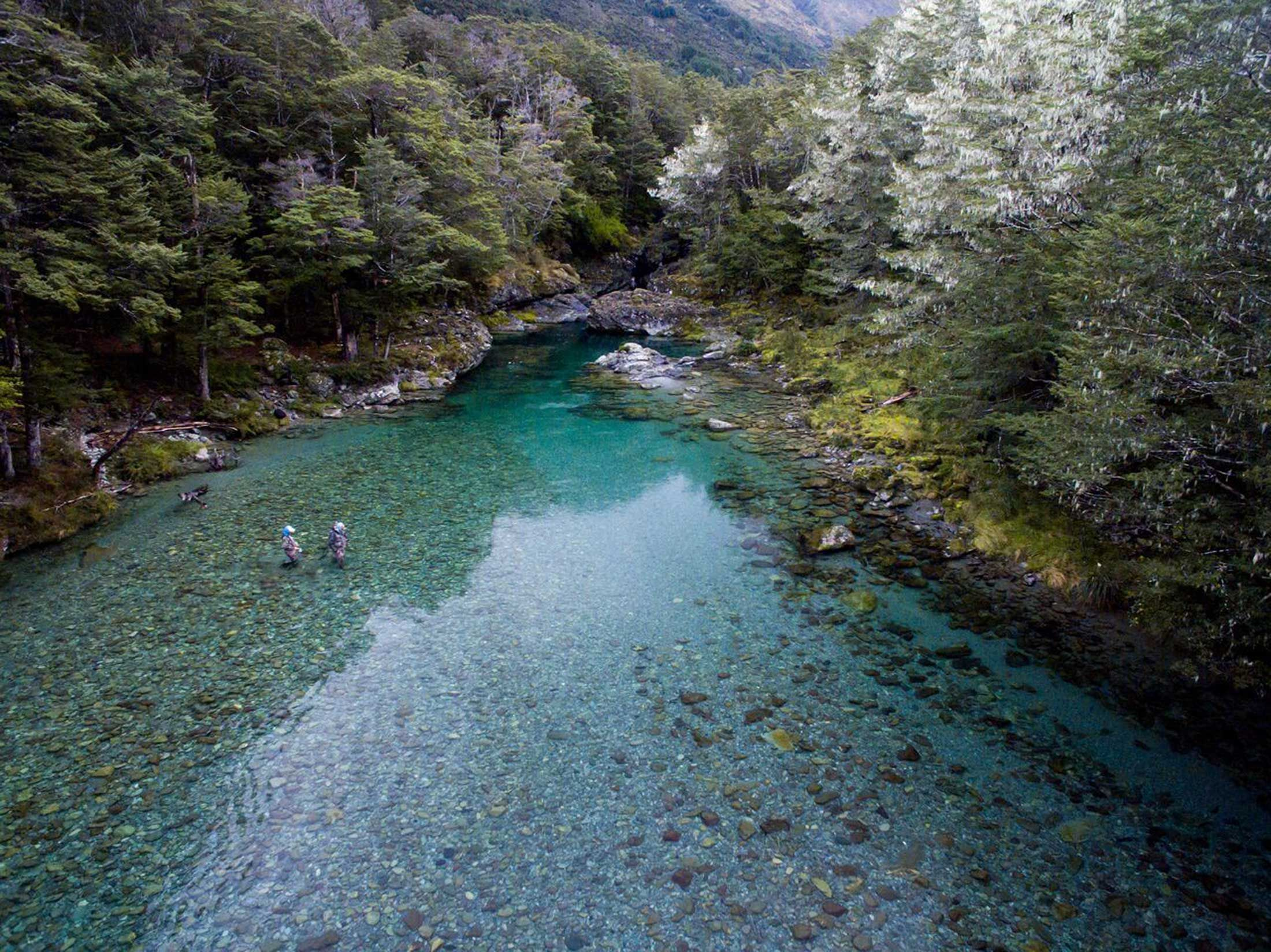 Guided fishing in Fiordland