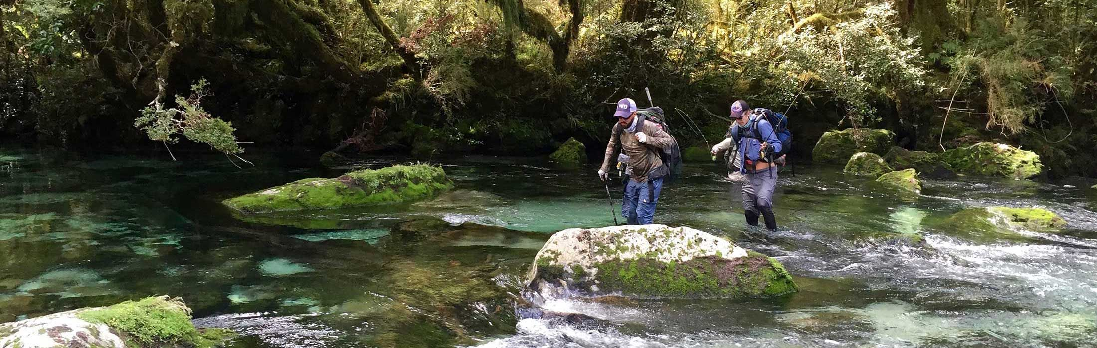Guided Fly fishing in Nz