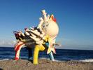 Abbey_Funk_BeachCreature_web.jpg