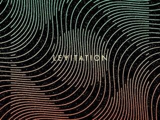 LEVITATION - Slowdive, S U R V I V E, MIEN