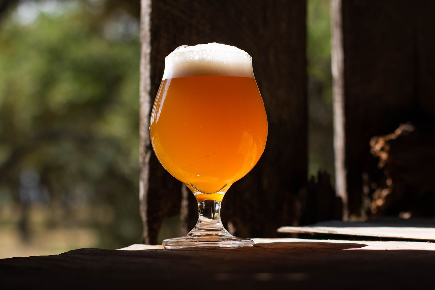 farmhouse lagered ale drink3.jpg