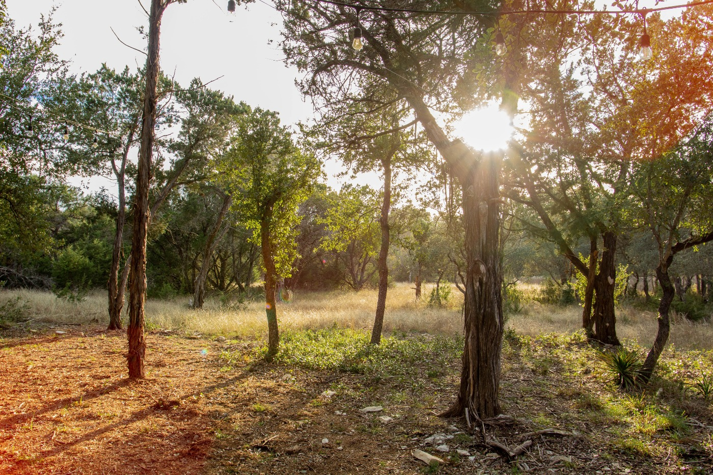 event center day2 C.jpg