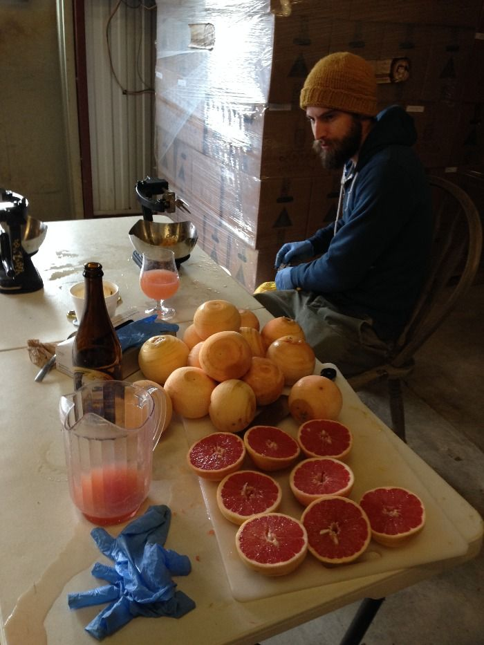 Grapefruit 2-1.jpg