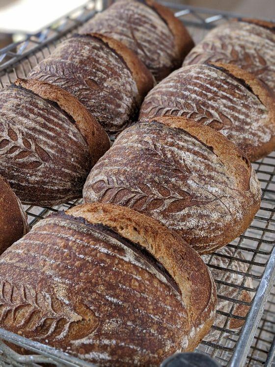 Sourdough bread.jpg