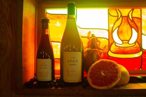 spon grapefruit  bp1-1.jpg