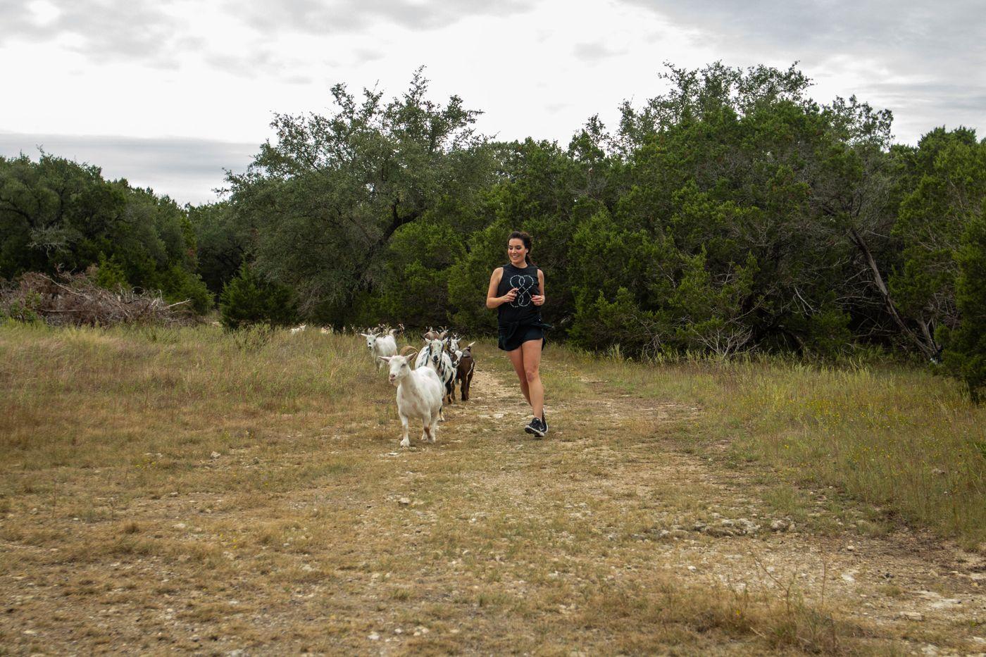 goat mile8.jpg