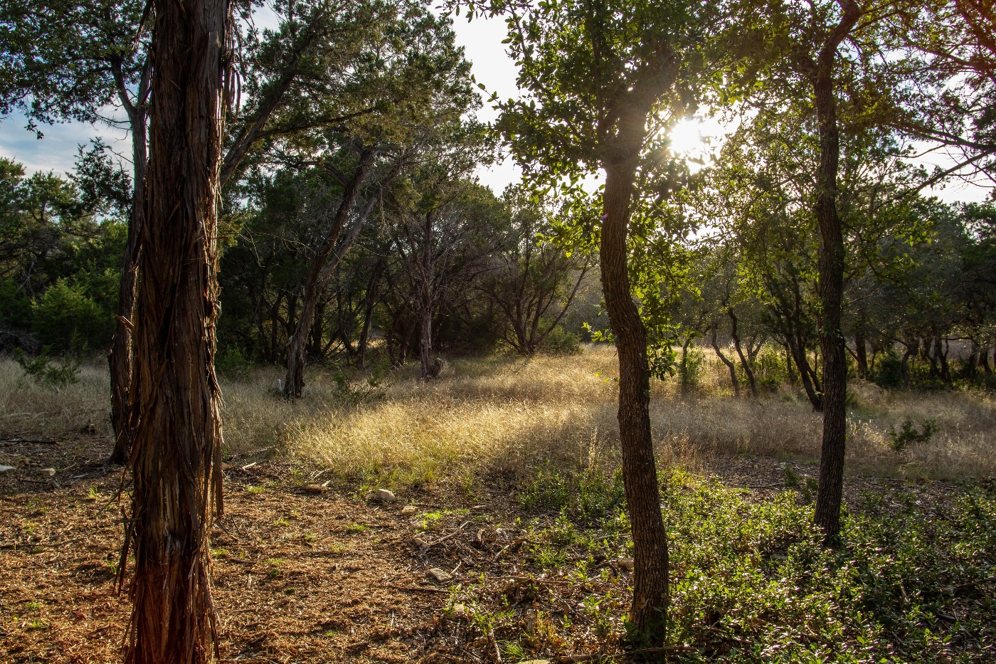 event center day2 D.jpg
