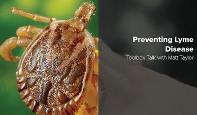 Toolbox-Talk--Web-20-07-Lyme-for-web.jpg