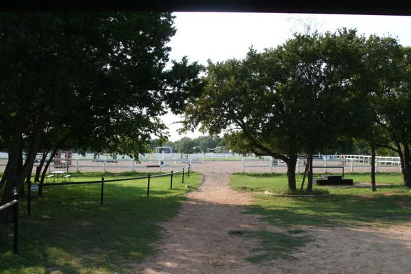 Horse Boarding in Manor, Texas