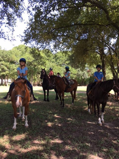 Beginner Horseback Riding near Austin