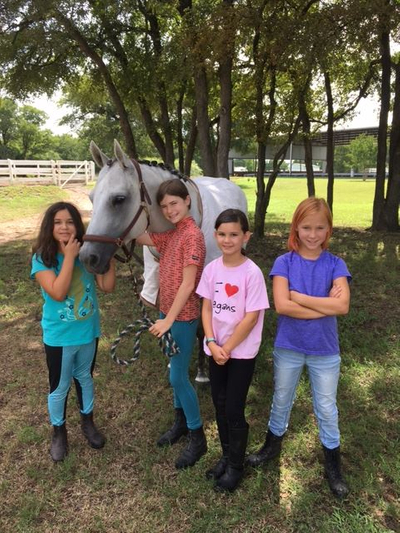 Horseback Riding Lessons for Children