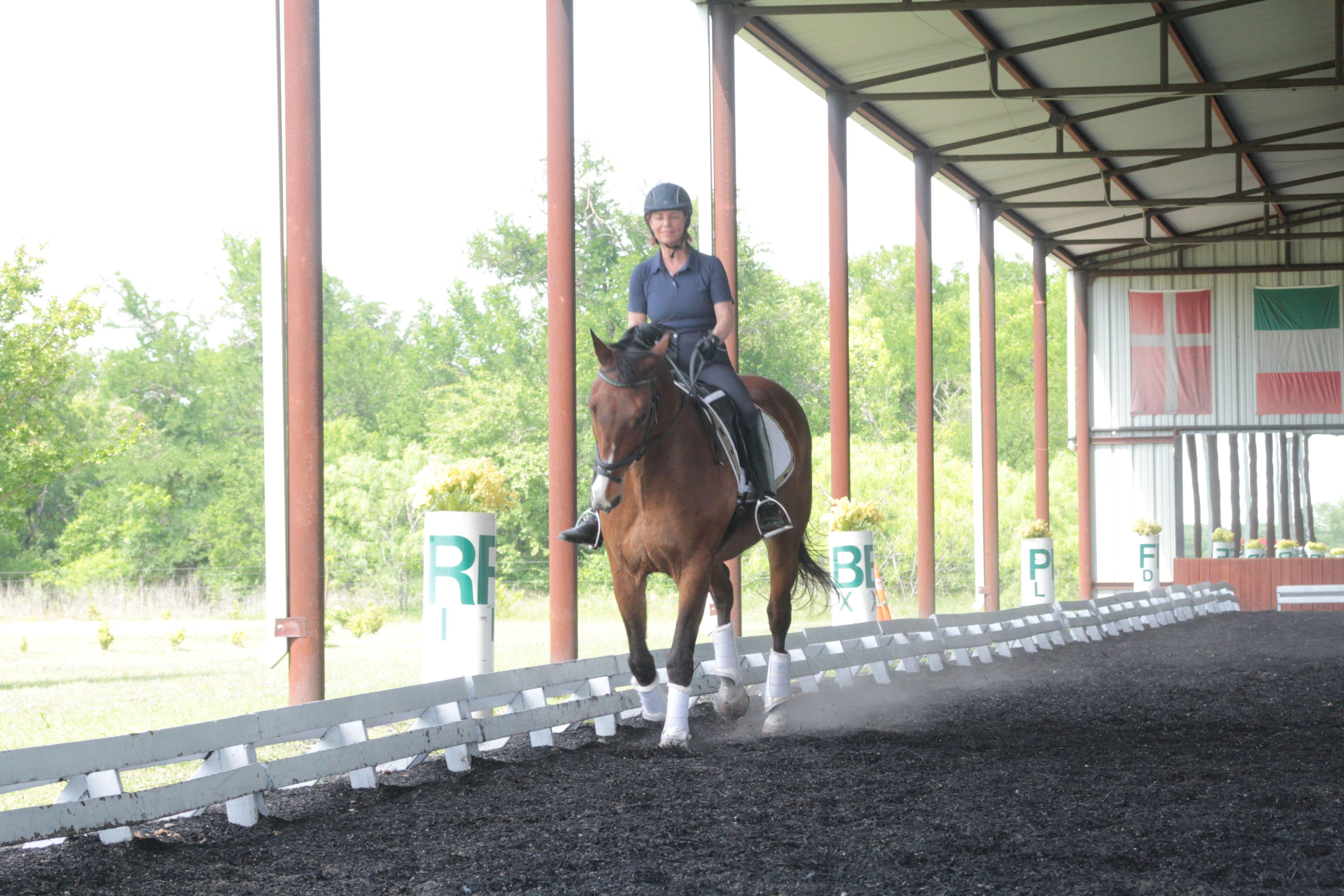 Equestrian Center Manor TX