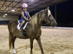 Horse Boarding and Lessons Near Austin - White Fences