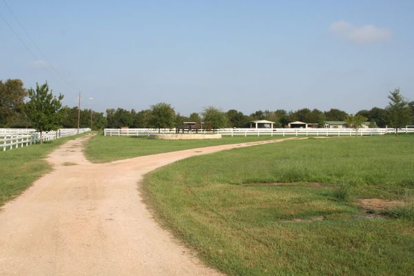 Horse Trail Rides in Manor, Texas
