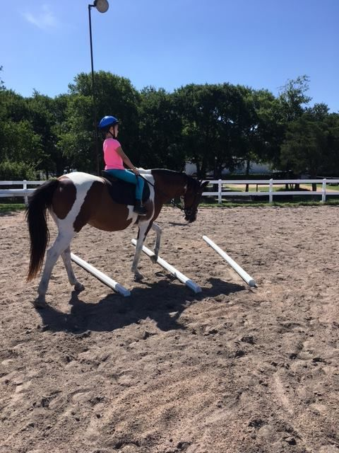 Dressage For Young Riders Program