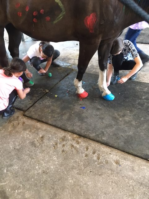Horse Camp for Children