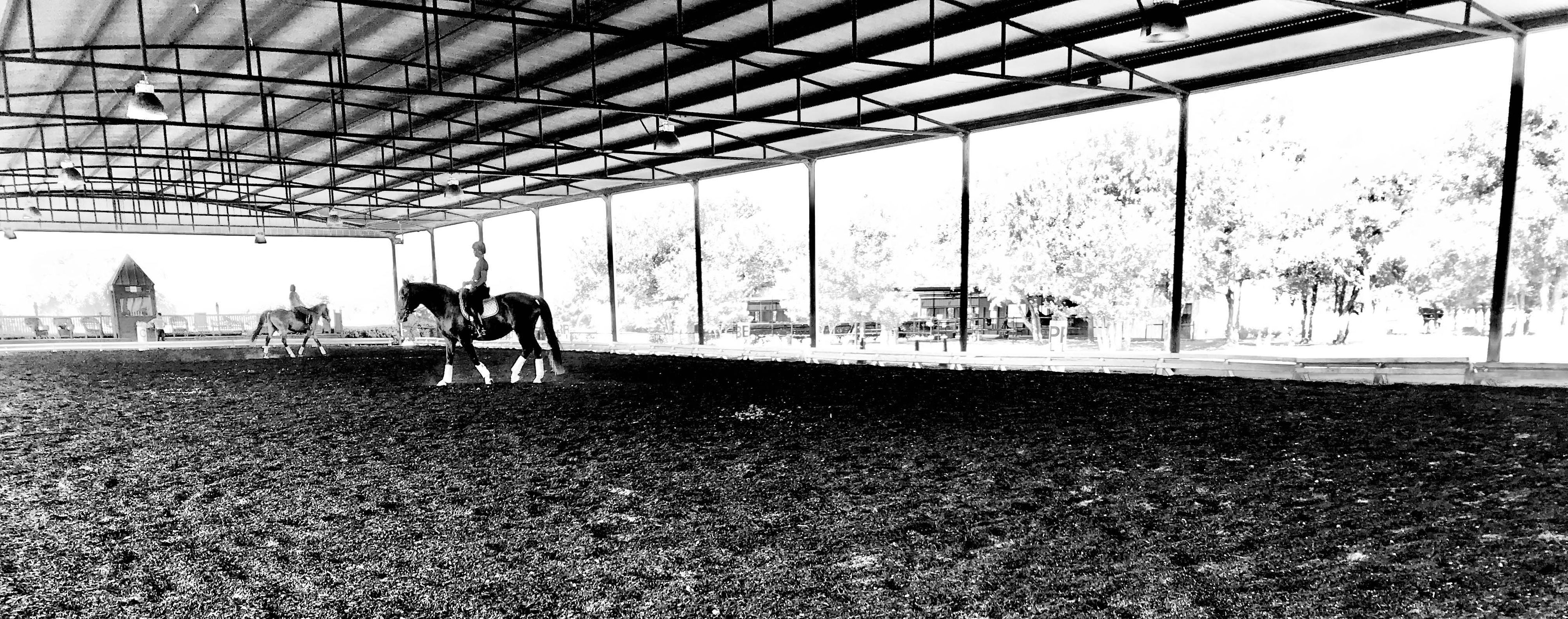 White Fences Equestrian Center