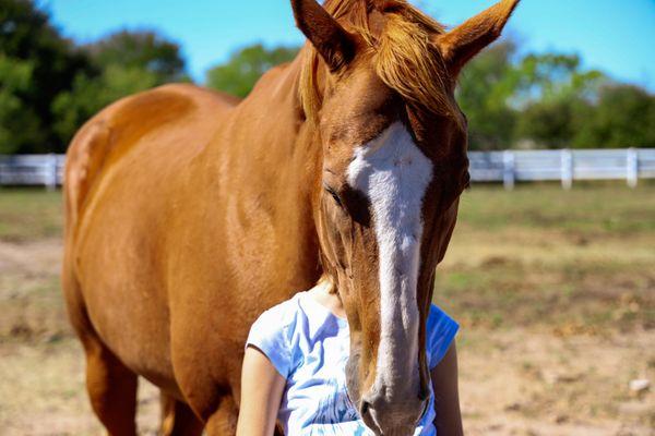 Horseback riding young adults