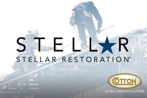 Stellar-WEB-Thumbnail-GDS.jpg
