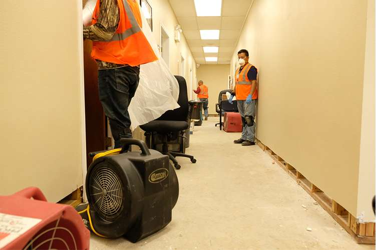 Cotton GDS  commercial disaster solution team repairing water damage in Ft. Lauderdale