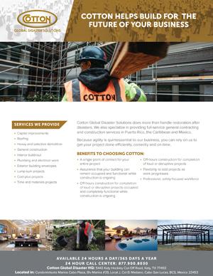 CapEx_International_Brochure.jpg