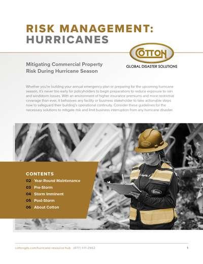 CottonGDS_RIMS-Whitepaper_Commercial-Hurricane.jpg