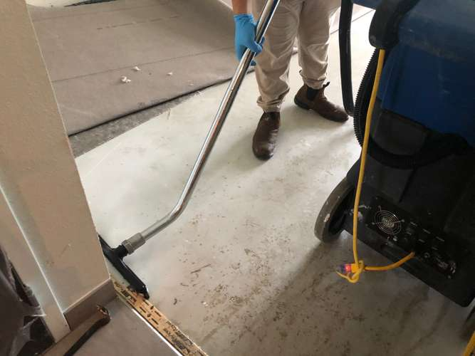 Cotton GDS employee vacuuming carpet in Houston area