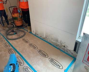 Cotton GDS commercial disaster solutions team doing mold removal and remediation