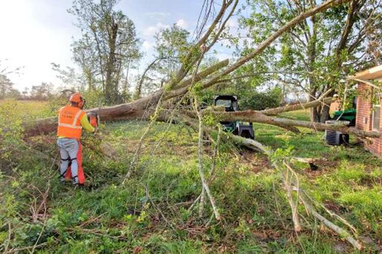 Cotton GDS commercial disaster solutions crew clearing tree debris in Lake Charles, LA