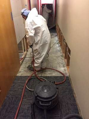 Cotton GDS commercial asbestos and lead paint abatement team