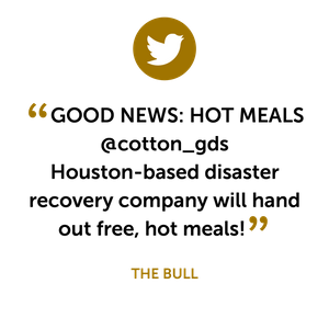 Social_Mention-05.png