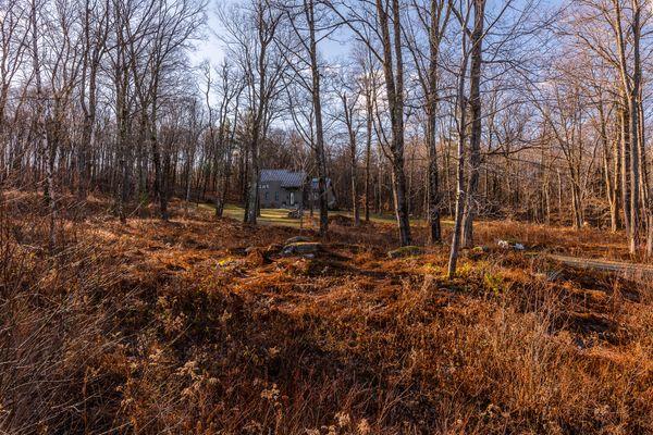 Berkshires Land1.jpg
