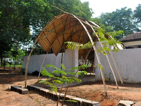 Bamboo Lattice Vault