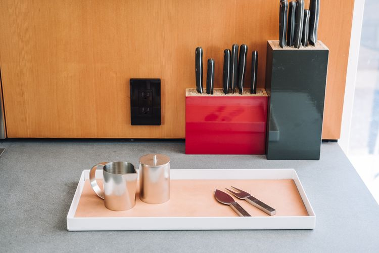 metal & leather tray